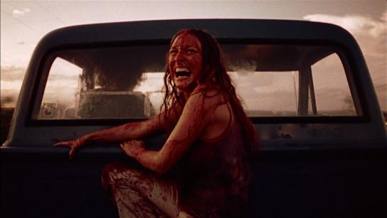 The Texas Chain Saw Massacre (1974) Image