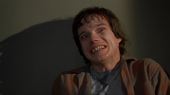 Amityville II: The Possession (1982) Image
