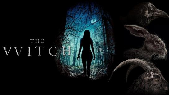 The Witch (2016) Image
