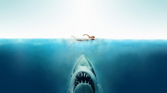 Jaws (1975) Image