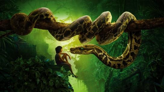 The Jungle Book (2016) Image