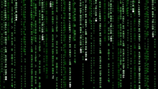 The Matrix (1999) Image