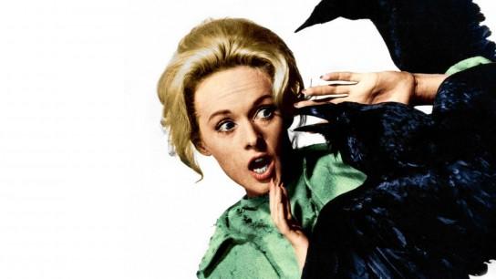 The Birds (1963) Image