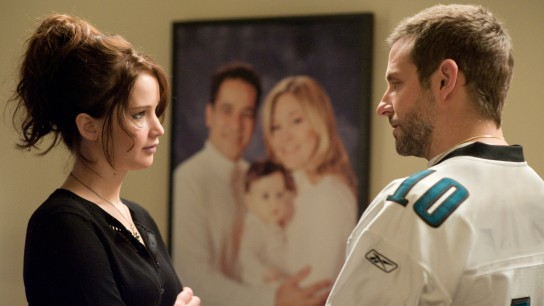 Silver Linings Playbook (2012) Image