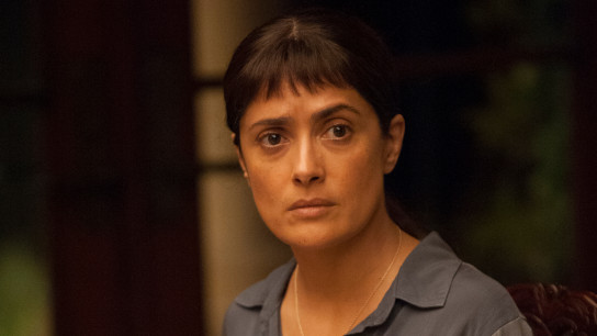 Beatriz at Dinner (2017) Image