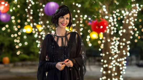 The Good Witch's Destiny (2013) Image