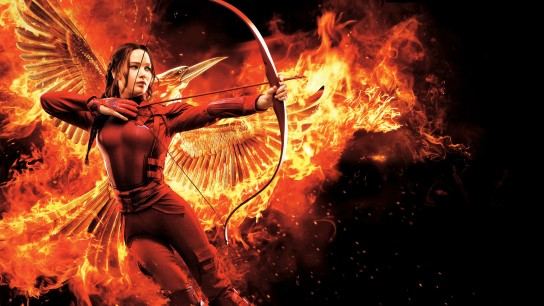 The Hunger Games: Mockingjay - Part 2 (2015) Image
