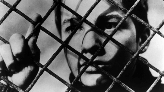 The 400 Blows (1959) Image