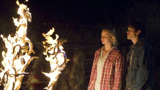 The Burning Plain (2008) Image