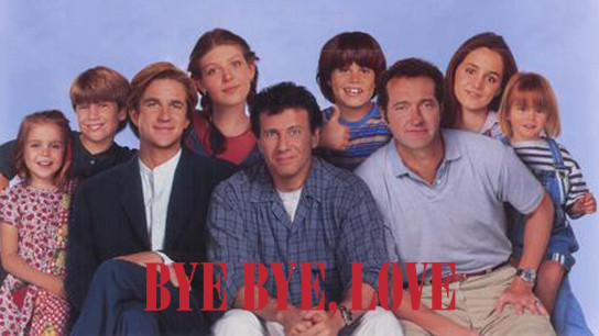 Bye Bye Love (1995) Image