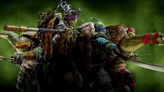 Teenage Mutant Ninja Turtles (2014) Image
