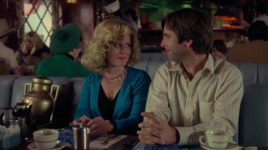 Honky Tonk Freeway (1981) Image