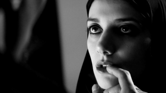 A Girl Walks Home Alone at Night (2014) Image