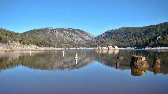 Kiss at Pine Lake Image