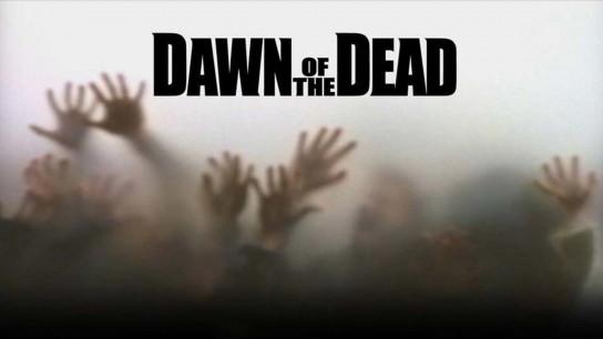 Dawn of the Dead (2004) Image