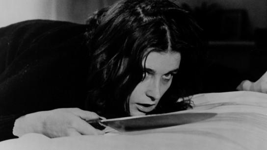 Sisters (1973) Image