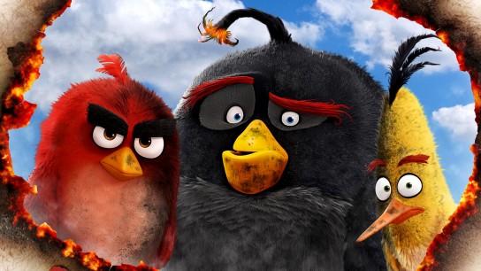 The Angry Birds Movie (2016) Image