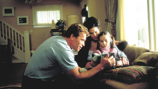 The 6th Day (2000) Image