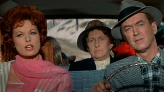 Mr. Hobbs Takes a Vacation (1962) Image