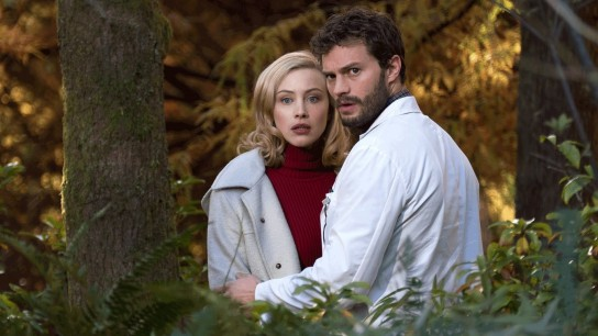 The 9th Life of Louis Drax (2016) Image