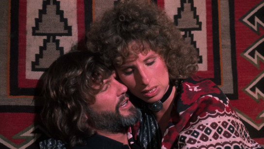 A Star Is Born (1976) Image