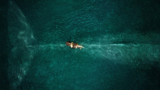 In the Heart of the Sea (2015) Image