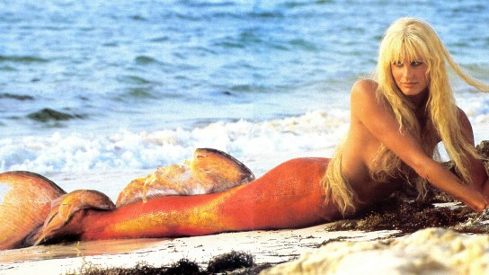 Splash (1984) Image