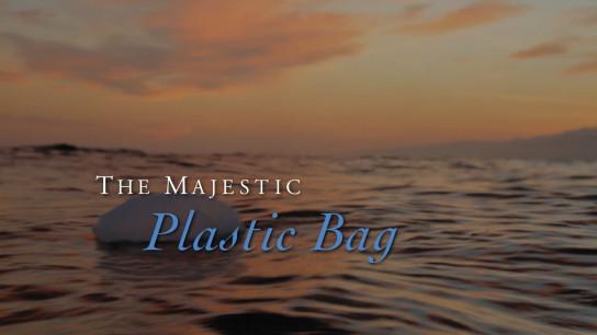 The Majestic Plastic Bag (2010) Image