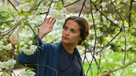 Testament of Youth (2015) Image