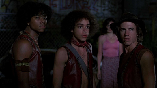 The Warriors (1979) Image