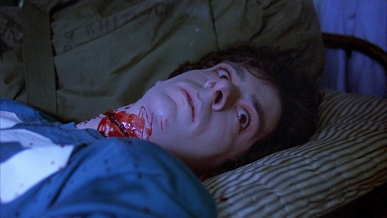 Friday the 13th (1980) Image