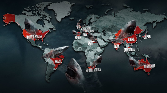 Sharknado 5: Global Swarming (2017) Image