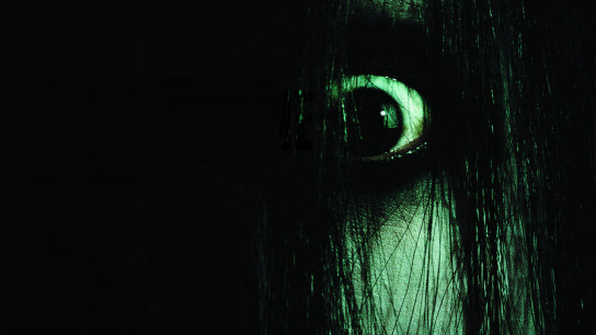 The Grudge (2004) Image