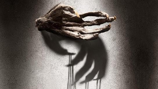 The Monkey's Paw (2013) Image