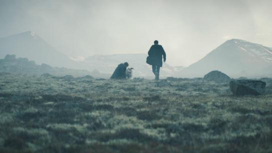 Lamb (2021) Image