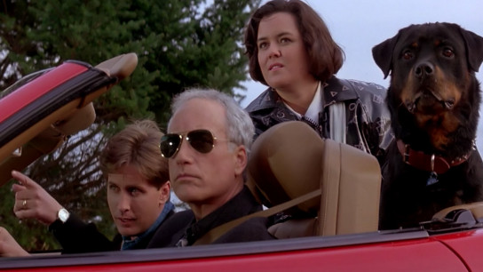 Another Stakeout (1993) Image