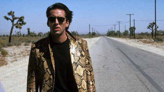 Wild at Heart (1990) Image