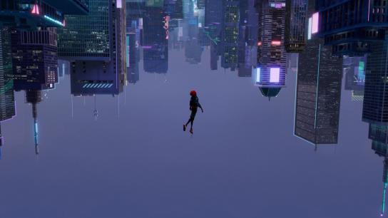 Spider-Man: Into the Spider-Verse (2018) Image