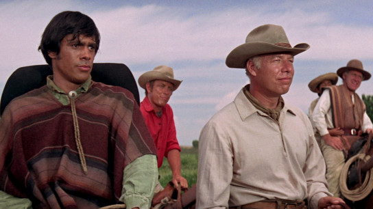 Guns of the Magnificent Seven (1969) Image