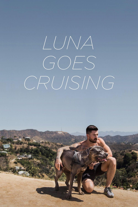 Luna Goes Cruising (2015)