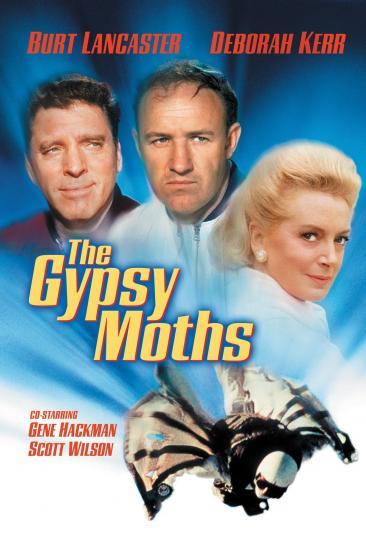 The Gypsy Moths (1969)