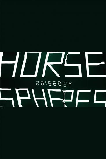 The Horse Raised by Spheres (2014)