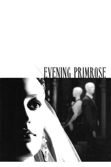 Evening Primrose (2010)