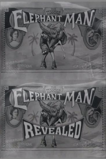 The Terrible Elephant Man Revealed (2001)