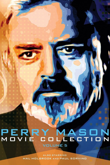 Perry Mason: The Case of the Telltale Talk Show Host (1993)