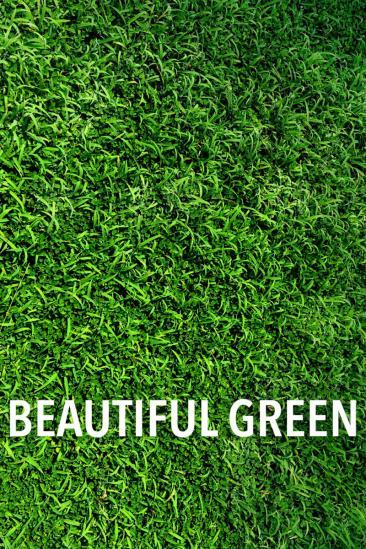 Beautiful Green (1996)