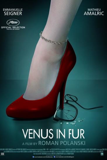 Venus in Fur (2013)