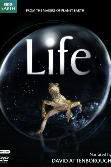 Life (2010)