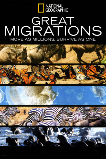 Great Migrations (2010)