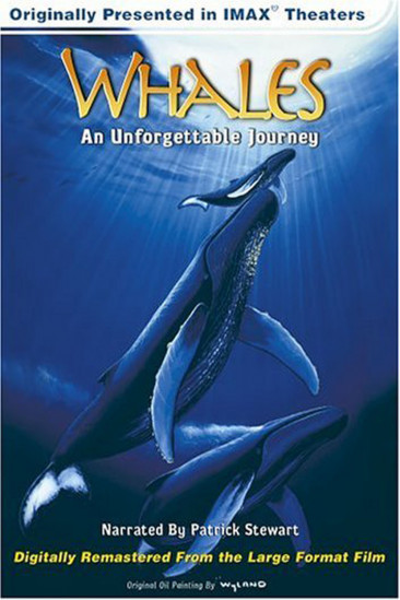 Whales: An Unforgettable Journey (1997)